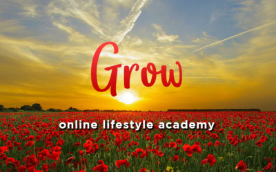 New Online Courses
